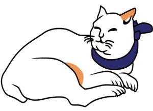 猫の皿えさを食べる猫